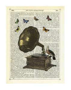 Gramophone, Bird & Butterflies by Marion Mcconaghie
