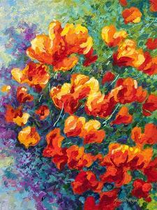 Cal Poppies by Marion Rose