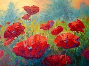 Field Of Poppies by Marion Rose