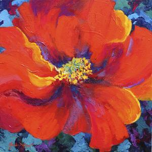 Passion Poppy by Marion Rose