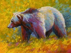 Pastel Grizz by Marion Rose