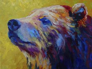 Pretty Boy Grizz by Marion Rose