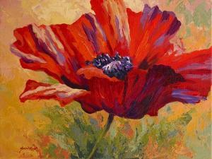 Red Poppy II by Marion Rose