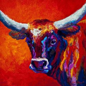 Steer by Marion Rose