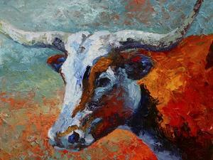 Young Longhorn by Marion Rose