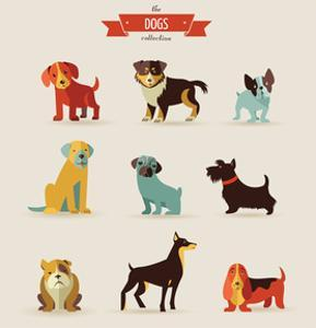 Dogs Vector Set of Icons and Illustrations by Marish