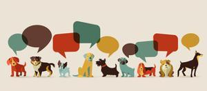 Dogs with Speech Bubbles - Vector Set of Icons and Illustrations by Marish