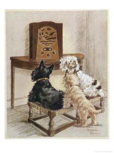 Three Dogs Enjoy a Radio Broadcast by Marjorie Turner