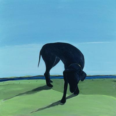 Joe's Black Dog, 1996