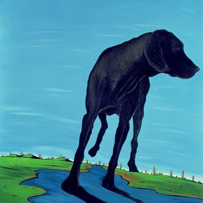 Joe's Black Dog (New View), 2000