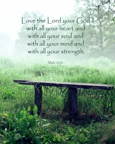 Mark 12:30 Love the Lord Your God (Bench)-Inspire Me-Art Print