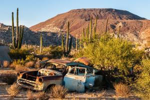 An rusted out car in the Sonoran Desert, Baja California, Mexico by Mark A Johnson