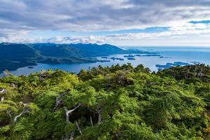 Sitka Sound, Baranof Island, Sitka, Alaska, USA by Mark A Johnson