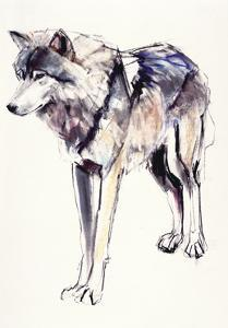 Alpha by Mark Adlington