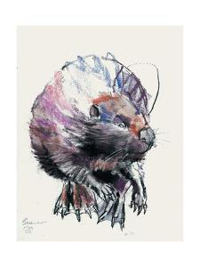 Beaver, 2001 by Mark Adlington