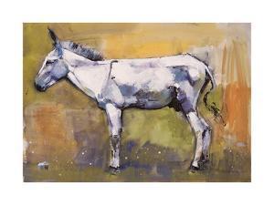Donkey Stallion, Ronda, 1998 by Mark Adlington