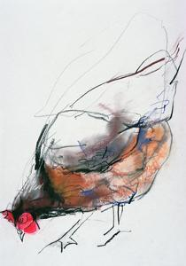 Feeding Hen, Trasierra, 1998 by Mark Adlington