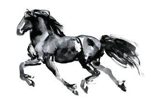 Flying Friesian, 2015 by Mark Adlington