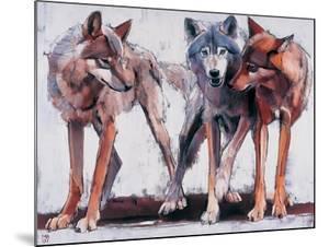 Pack Leaders, 2001 by Mark Adlington