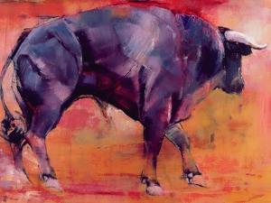 Parado, 1999 by Mark Adlington