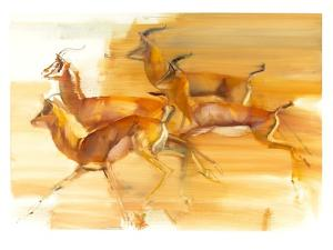 Running Gazelles, 2010 by Mark Adlington