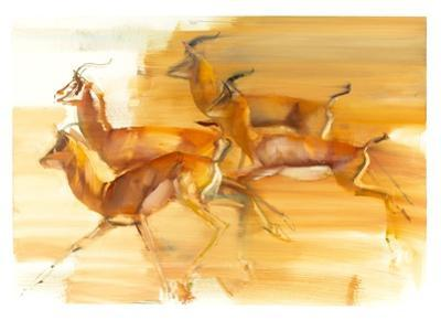 Running Gazelles, 2010 by Mark Adlington