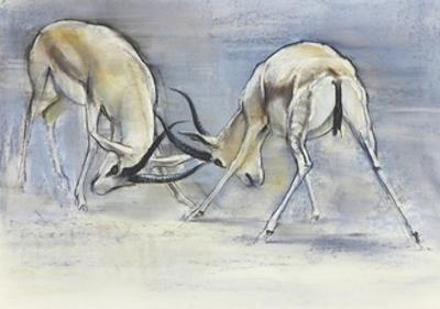Sand Gazelles, 2009 by Mark Adlington