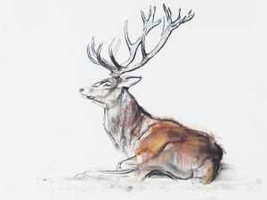 Seated Stag, 2006 by Mark Adlington
