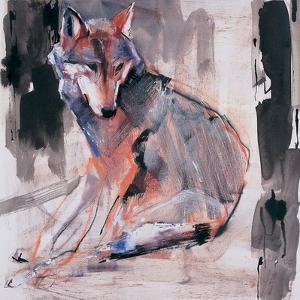Sitting Wolf, 2000 by Mark Adlington
