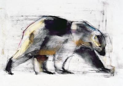 Ursus Maritimus, 1999 by Mark Adlington