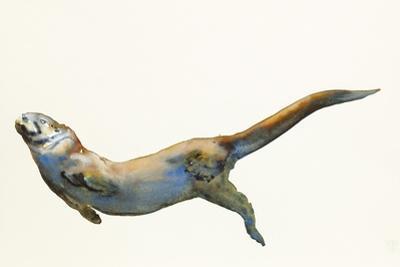 Velvet, 2014 by Mark Adlington