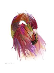 Flamingo Colors 2 by Mark Ashkenazi