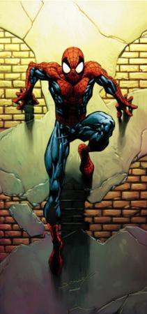 Ultimate Spider-Man No.72 Cover: Spider-Man