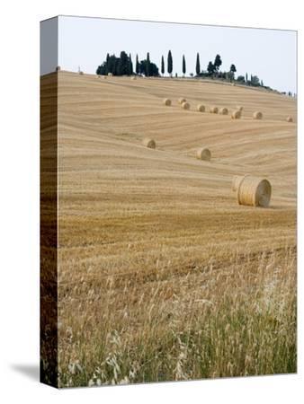 Bales of Hay on Tuscan Farm