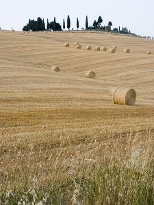 Bales of Hay on Tuscan Farm by Mark Bolton