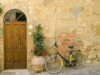 Bicycle Next to Flowers and Door