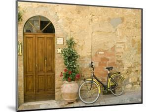 Bicycle Next to Flowers and Door by Mark Bolton