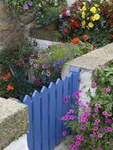 Blue Garden Gate in Spring Garden by Mark Bolton