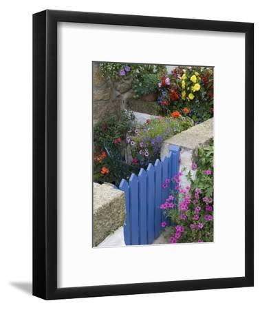 Blue Garden Gate in Spring Garden