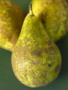 Conference Pears by Mark Bolton