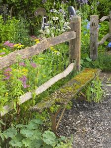 Flower Garden with Old Wood Fence by Mark Bolton