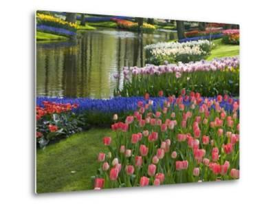 Spring Tulips by Stream