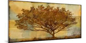 Autumn Radiance Sepia by Mark Chandon