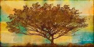 Autumn Radiance by Mark Chandon