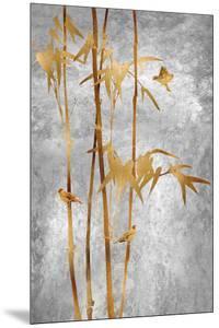Bamboo Gleam by Mark Chandon