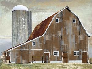 Barn Silo - Abilene by Mark Chandon
