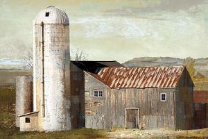 Barn Silo - Lubbock by Mark Chandon