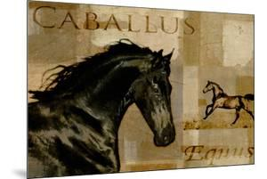 Caballus I by Mark Chandon