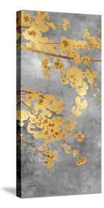 Cherry Blossom - Radiant by Mark Chandon