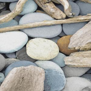 Coastal Retreat - Flotsam by Mark Chandon
